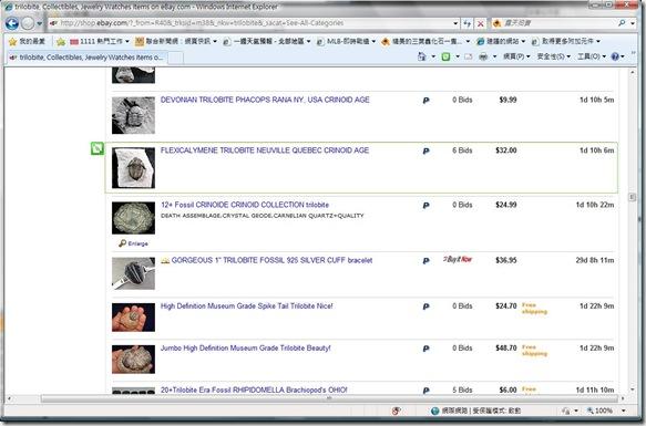 eBayWebSlices1